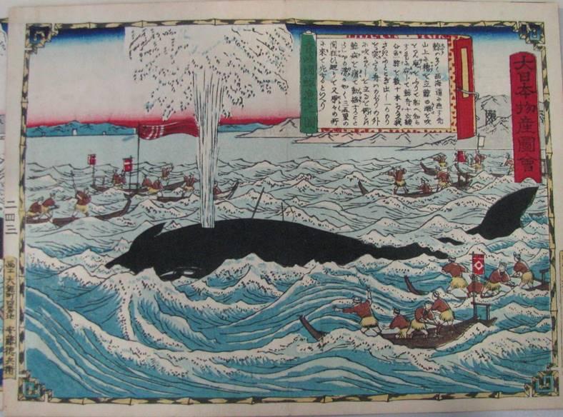 江戸時代、庶民に人気だった鯨は経済を動かしていた